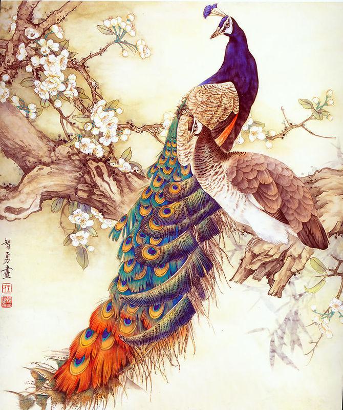 Y Nghia Hinh xam chim cong